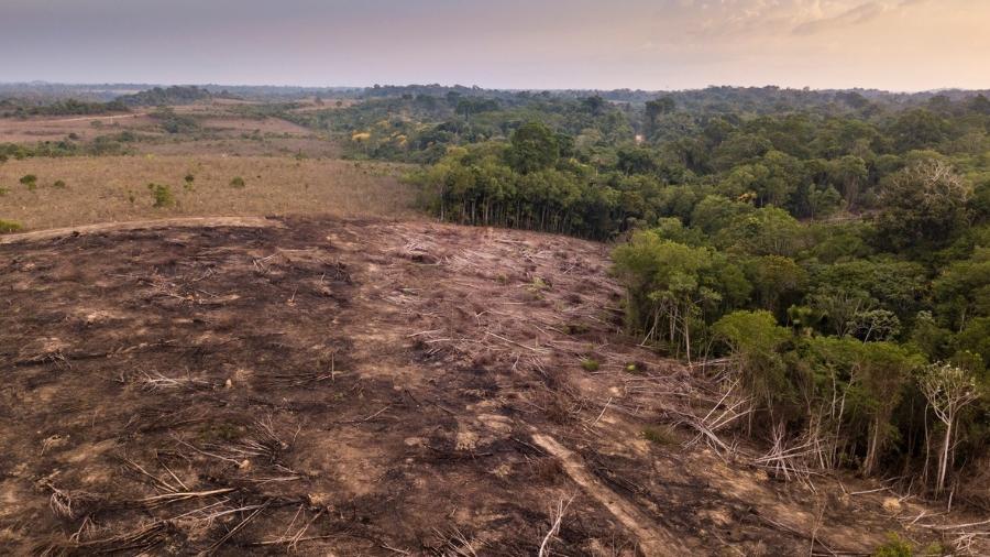 Vista aérea de desmatamento na Amazônia - Paralaxis/Getty Images/iStockphoto