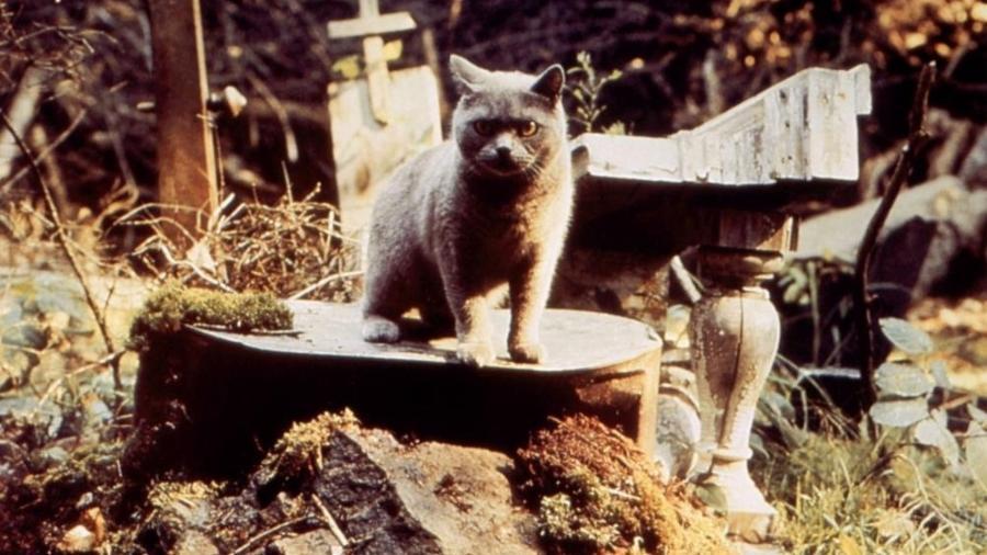 """Cena de """"Cemitério Maldito"""", filme de 1989 - Reprodução"""