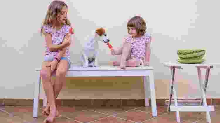 O melhor para refrescar os bichinhos são picolés a base de frutas menos calóricas - Getty Images/EyeEm - Getty Images/EyeEm