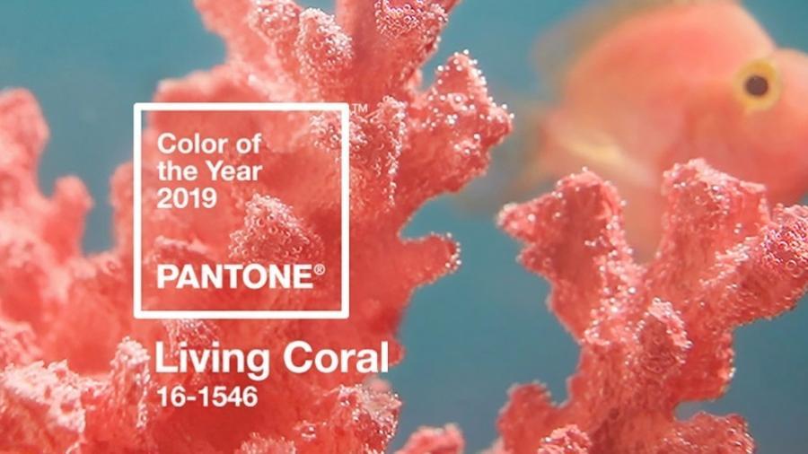 Pantone Living Coral - Reprodução