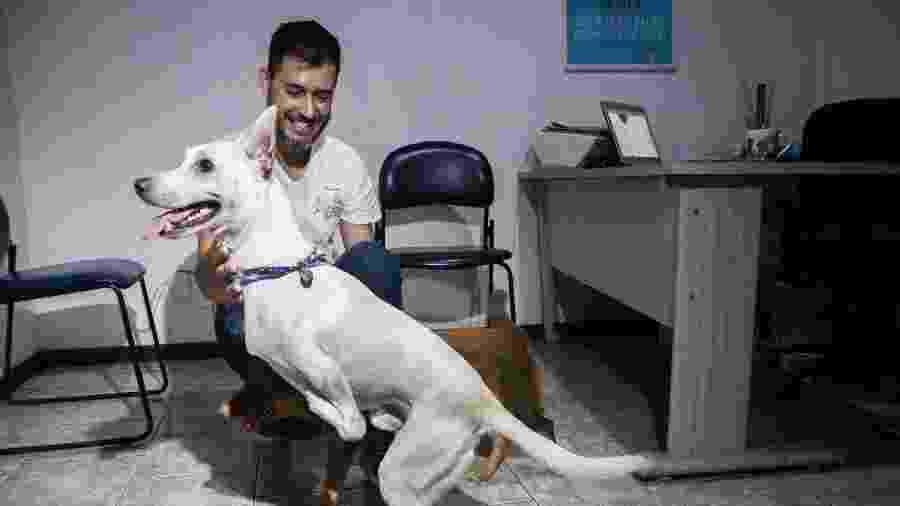 Tintim, o cão com deficiência nas patas que foi abandonado, ganha novo lar - Thales Ferreira/Prefeitura de São Leopoldo