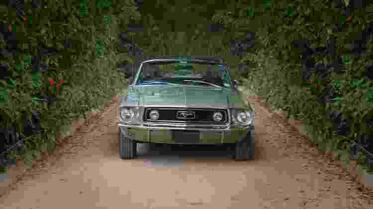 Ford Mustang coleção Marcelo Simionato - Arquivo pessoal - Arquivo pessoal