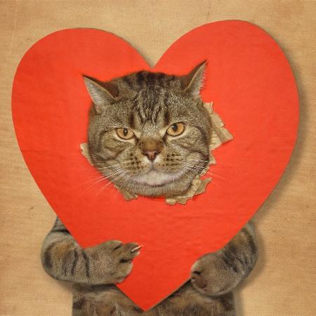 Solteiros já sofrem o Dia dos Namorados! - Getty Images/iStockphoto