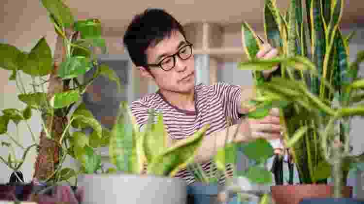 plantados - homem com plantas - urban jungle - Getty Images - Getty Images