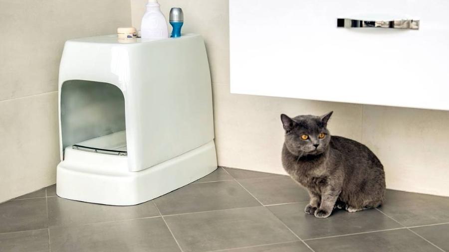 Privada para gatos - Divulgação