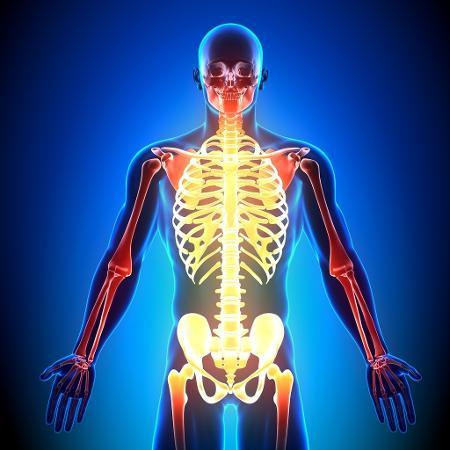 Estudos da USP mostraram que o exercício físico, principalmente a atividade aeróbica, resgata a funcionalidade da enzima ECA2 - iStock