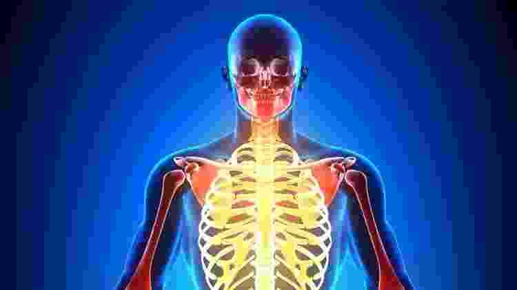 Esqueleto, corpo humano, corpo todo, fibromialgia, dor - iStock - iStock