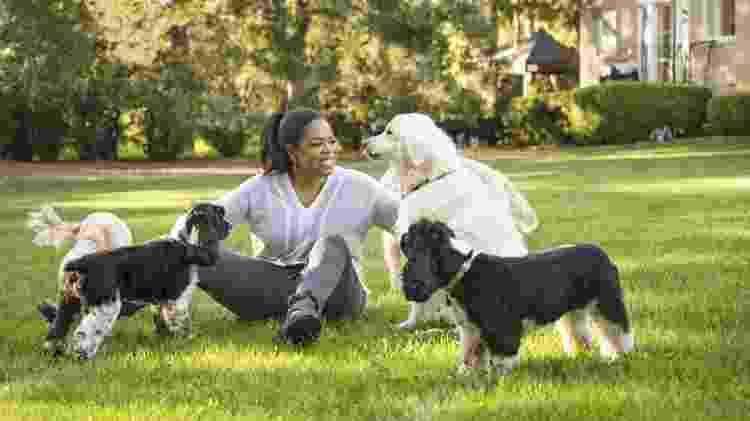 Oprah dogs  - Reprodução/Oprah.com - Reprodução/Oprah.com