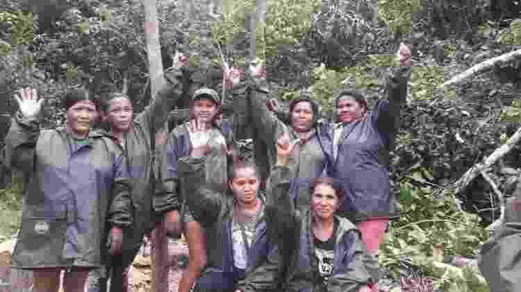 guerreiras da floresta - Divulgação - Divulgação