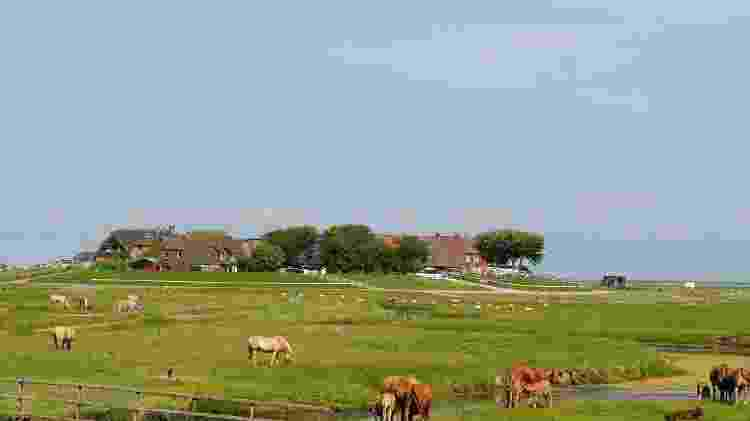 Vista da ilha Hooge  - iStock
