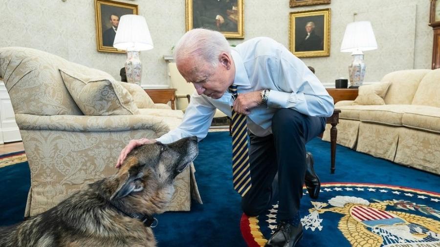 O presidente dos Estados Unidos, Joe Biden, com seu pastor alemão, Champ - Reprodução/Instagram