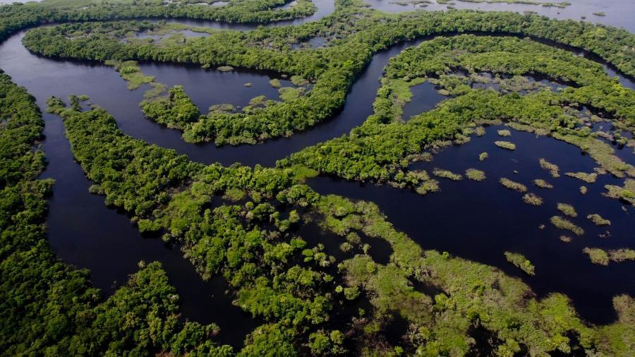 MANAUS AM 13-09 2011-  Sobrevoo  nos arquipélogos de Anavilhanas e Mariauá. Paisagem no Parque Nacional de Anavilhanas. (Foto Alberto Cesar Araujo/Foto Amazonas) - Alberto Cesar Araujo/Foto Amazon