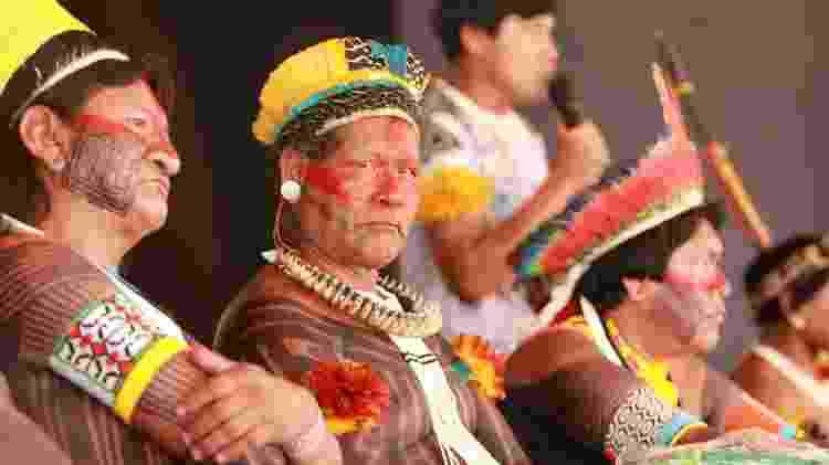 Escola de Samba Imperatriz Leopoldinense homenageia os povos do Xingu - Estefan Radovicz/Agência O Dia/Estadão Conteúdo - Estefan Radovicz/Agência O Dia/Estadão Conteúdo