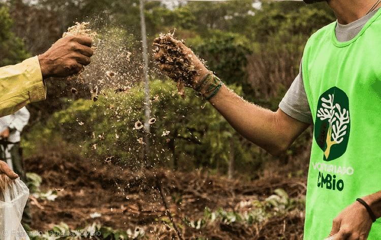 Voluntários espalham sementes nativas do Cerrado - Fernando Tatagiba/ICMBio - Fernando Tatagiba/ICMBio