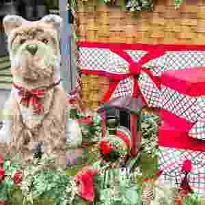 No Shopping Pátio Higienópolis, o trono do Papai Noel está no Piso Vilaboim até 24 de dezembro, com funcionamento de segunda a sábado, das 10h às 22h; domingos e feriados, das 14h às 20 horas. Onde: Avenida Higienópolis, 618, com entradas alternativas pelas ruas Dr. Veiga Filho 133 e Albuquerque Lins, 1345. - Divulgação