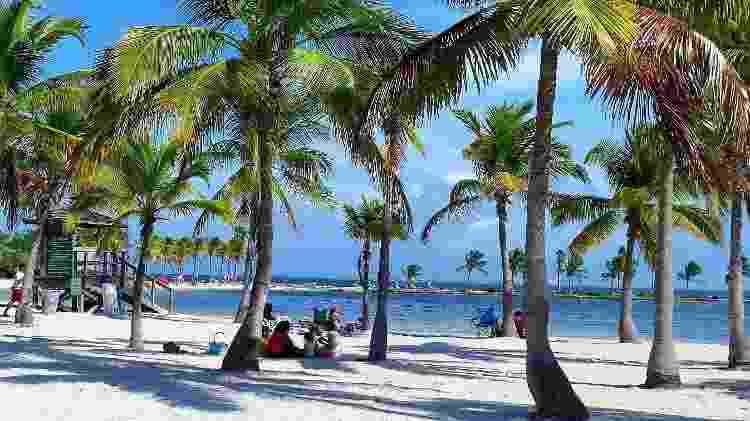 Praia Miami desconhecida - Ana Paula Garrido - Ana Paula Garrido