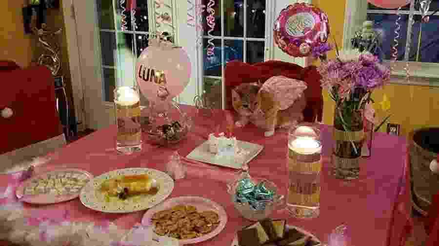 Luna em sua festa - Reprodução/Facebook
