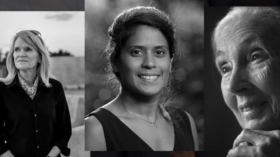 """Cartaz do documentário """"Mulheres: Histórias de Impacto"""" - Divulgação"""
