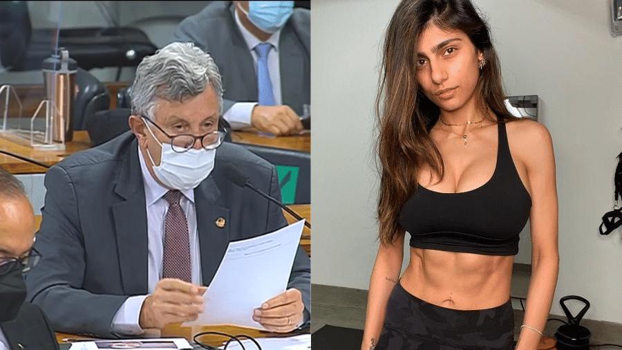 Senador Luis Carlos Heinze (PP-RS) voltou a citar pesquisa conduzida por uma atriz pornô e irritou o senador Randolfe Rodrigues (Rede-AP) - Reprodução