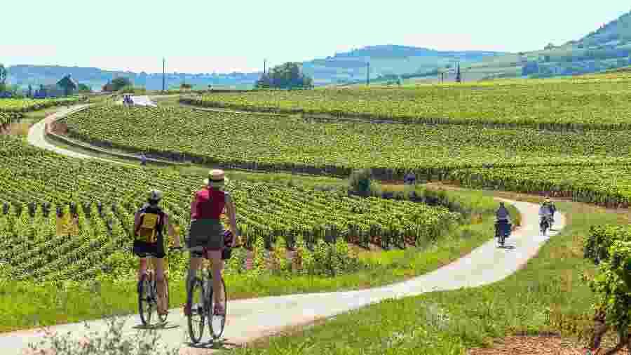 Em julho de 2015, os vinhedos da região da Borgonha, na França, foram considerados patrimônio mundial pela Unesco - Alain Doire/Divulgação