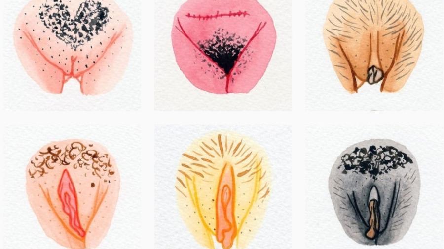 Reprodução Instagram/The Vulva Gallery