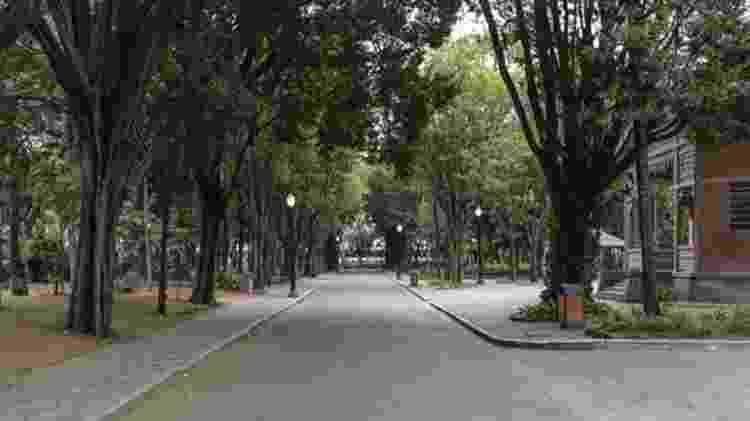 Interior do Parque da Luz está sem público e as prostitutas que fazem ponto no local - Gui Christ
