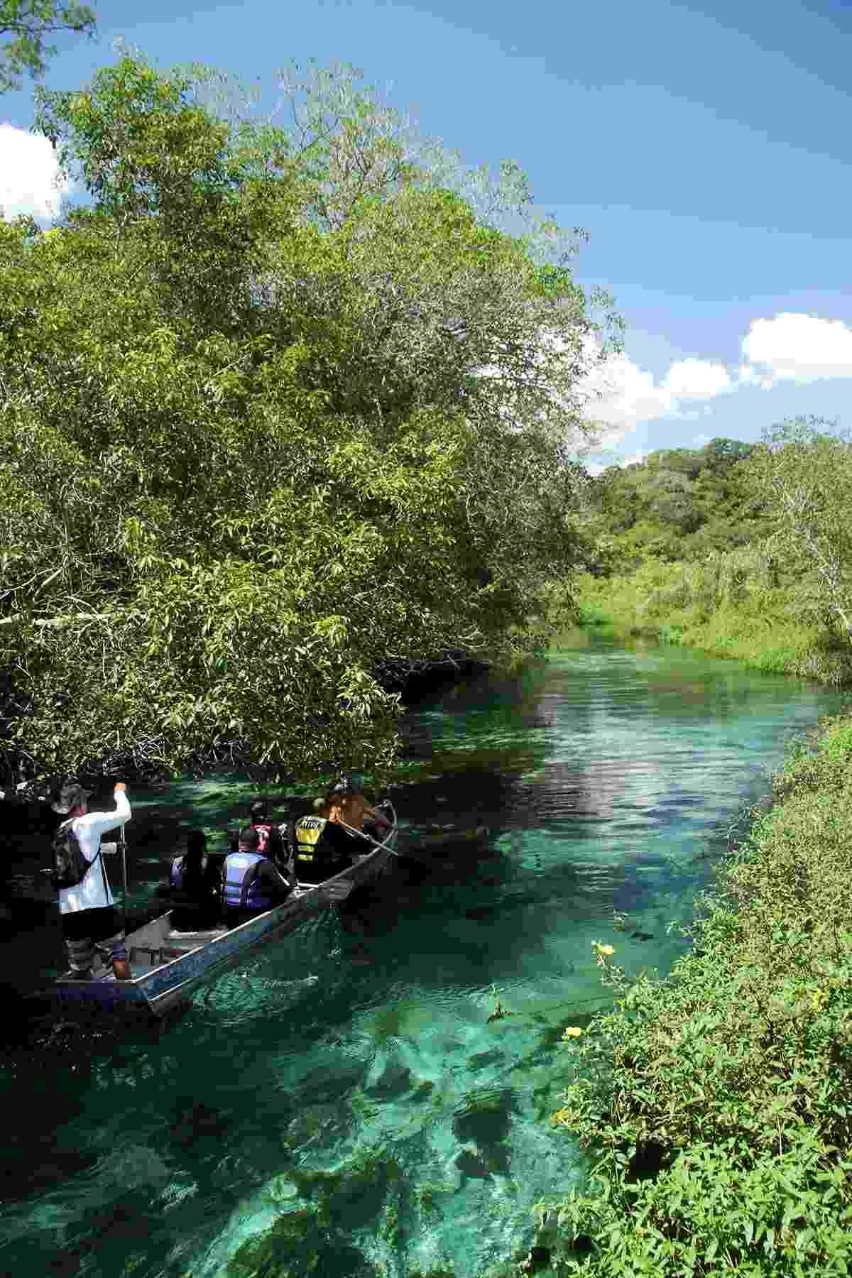 Rio Sucuri, um dos atrativos naturais de Bonito, no Mato Grosso do Sul - Eduardo Vessoni/UOL