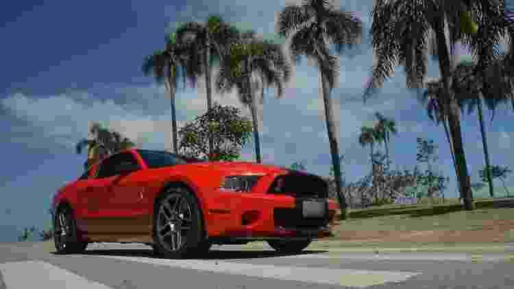 Ford Mustang coleção Marcelo Simionato Shelby - Arquivo pessoal - Arquivo pessoal