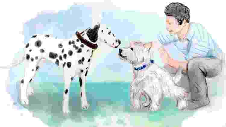 Ilustração - apresentação de animais (cães - socialização) - Didi Cunha/ Arte UOL - Didi Cunha/ Arte UOL