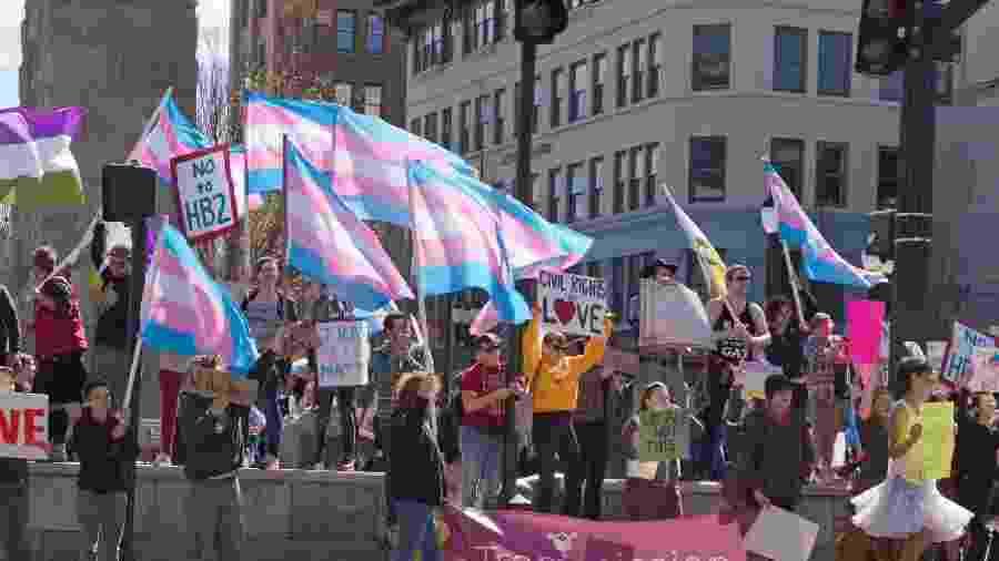 Bandeiras do orgulho trans em manifestação LGBTQ+ - iStock