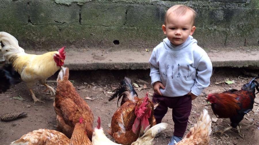 Romeo de 2 anos e 7 meses come lanches, pizza, doces, fast-food e até comida japonesa, tudo vegano - Arquivo Pessoal