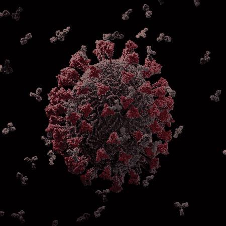 15.maio.2020 - Imagem em 3D do novo coronavírus  - Reprodução/YouTube/Visual Science