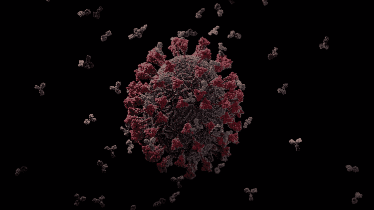 15.maio.2020 Imagem em 3D do novo coronavírus é considerada a mais precisa até agora - Reprodução/YouTube/Visual Science - Reprodução/YouTube/Visual Science