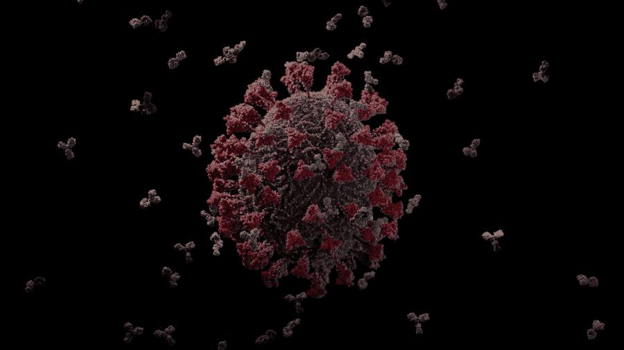 15.maio.2020 Imagem em 3D do novo coronavírus é considerada a mais precisa até agora - Reprodução/YouTube/Visual Science