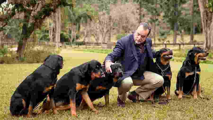 """Tony Ramos e os cães nas gravações de """"Vade Retro"""" - Ramón Vasconcelos/Globo"""