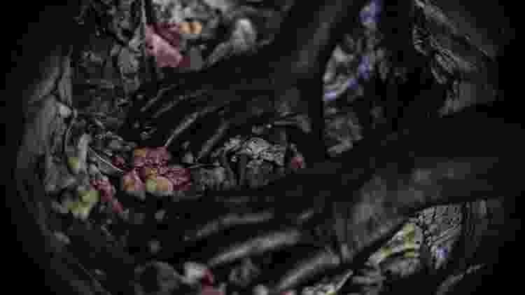 Amazonia Negra - Marcela Bonfim / Amazônia Negra - Marcela Bonfim / Amazônia Negra