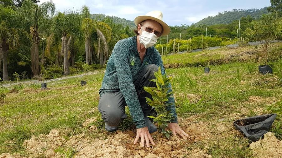 Plantio de árvore nativa da Mata Altântica no projeto Bosques da Memória em SC - Divulgação/ Apremavi