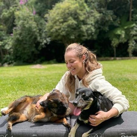 Paolla Oliveira compartilhou foto com os pets - Reprodução/Instagram @paollaoliveirareal
