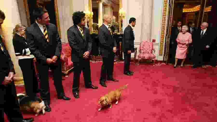 A rainha Elizabeth 2ª frequentemente leva seus cachorros para compromissos oficiais, como pode ser visto nesta foto de 2007 - Corbis via Getty Images