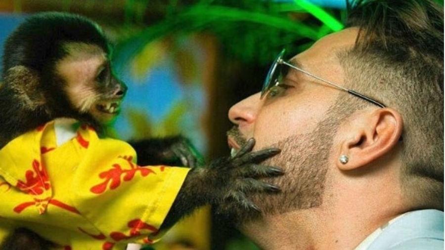 Latino e o macaco Twelves, que morreu após ser atropelado - Reprodução/Instagram.com/twelvesoficial