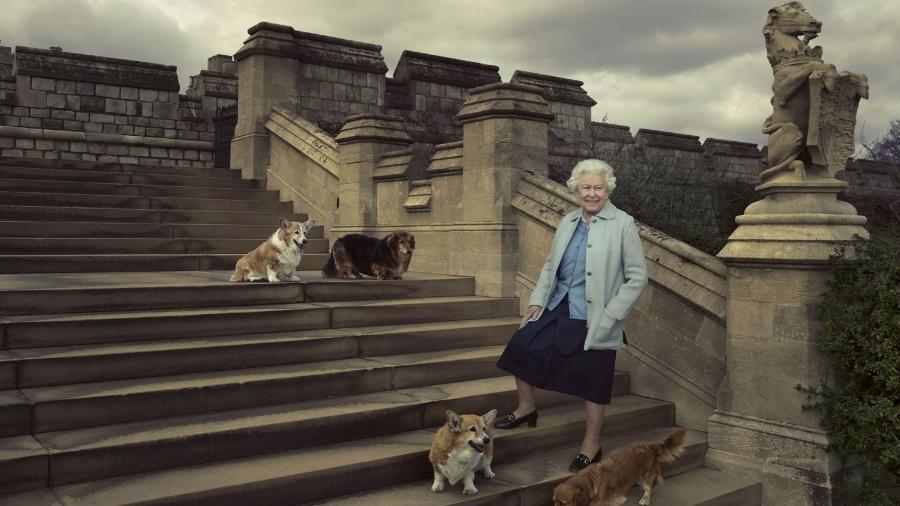 Os muitos corgis da rainha Elizabeth ficaram famosos ao redor do mundo - Divulgação/Buckingham Palace
