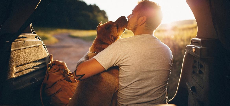 Seu melhor amigo, seja gato ou cão, pode também ser um companheiro de viagem - Getty Images