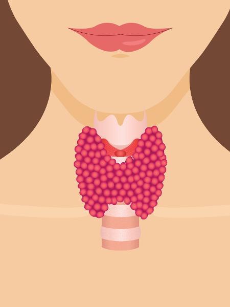 De um jeito fofo de explicar: a tireoide parece uma borboleta na garganta - iStock