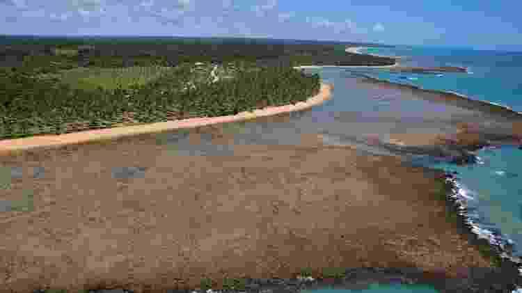 Praia dos Coqueiros - Trancoso (BA) - Divulgação - Divulgação