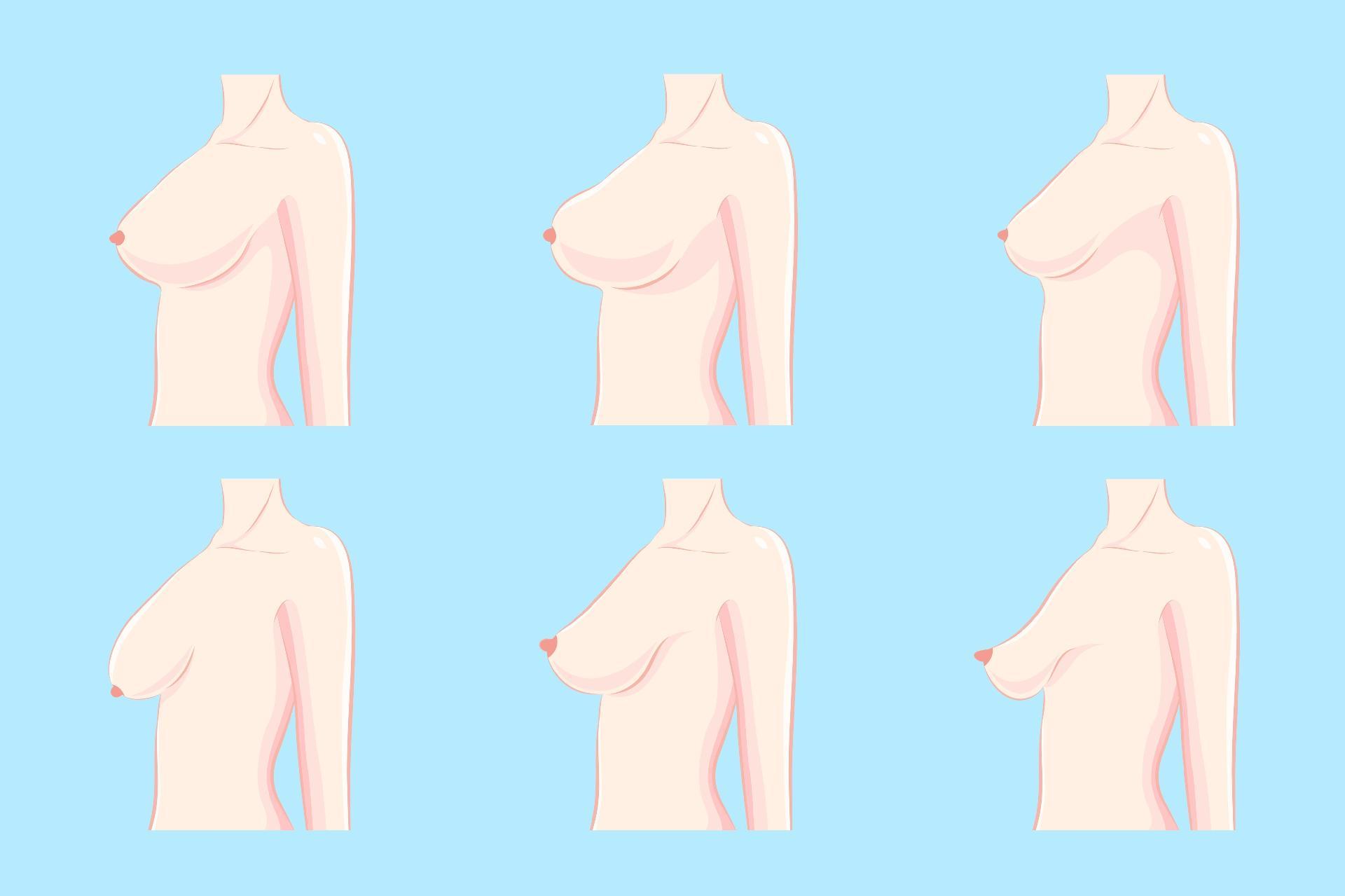 34f18096c Que mudanças ocorrem nos seios após a gravidez e amamentação  - 18 08 2018  - UOL Universa