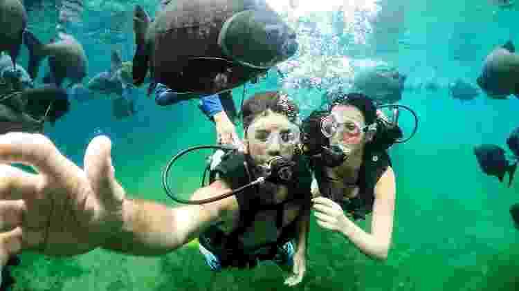 Mergulho no lago do Hot Park  - Divulgação - Divulgação