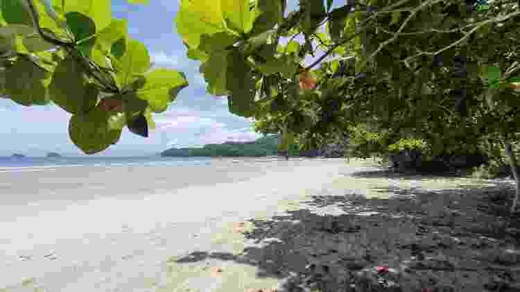 Praia da Fazenda - Ubatuba (SP) - Marcel Vincenti - Marcel Vincenti