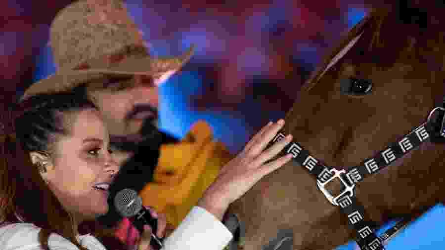 Maiara ganha um cavalo quarto de milha de Fernando Zor - Reprodução/Instagram