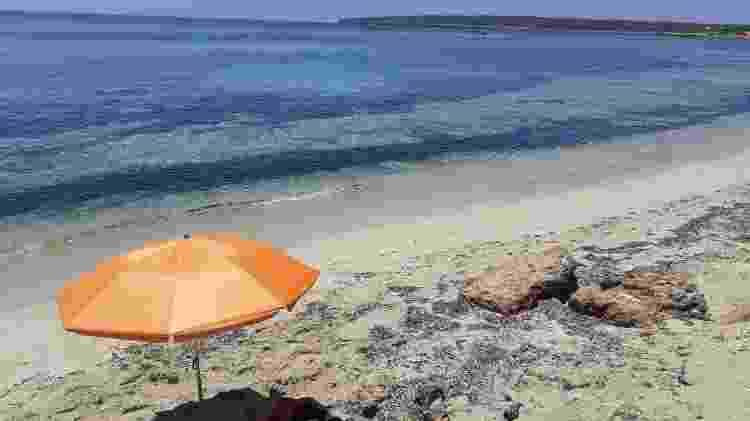 A ilha de Formentera tem praias paradisíacas que merecem uma visita do turista que está em Ibiza - Marcel Vincenti/UOL - Marcel Vincenti/UOL