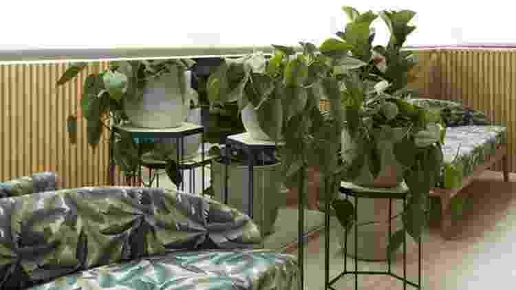 decoração fauna e flora - Alain Brugier/Divulgação - Alain Brugier/Divulgação